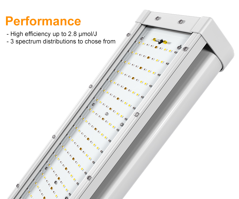 LED grow Light Performance