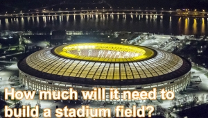 How much will it need to build a stadium field?