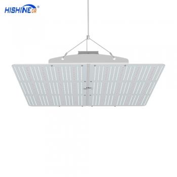 PG02 600W LED Grow Light