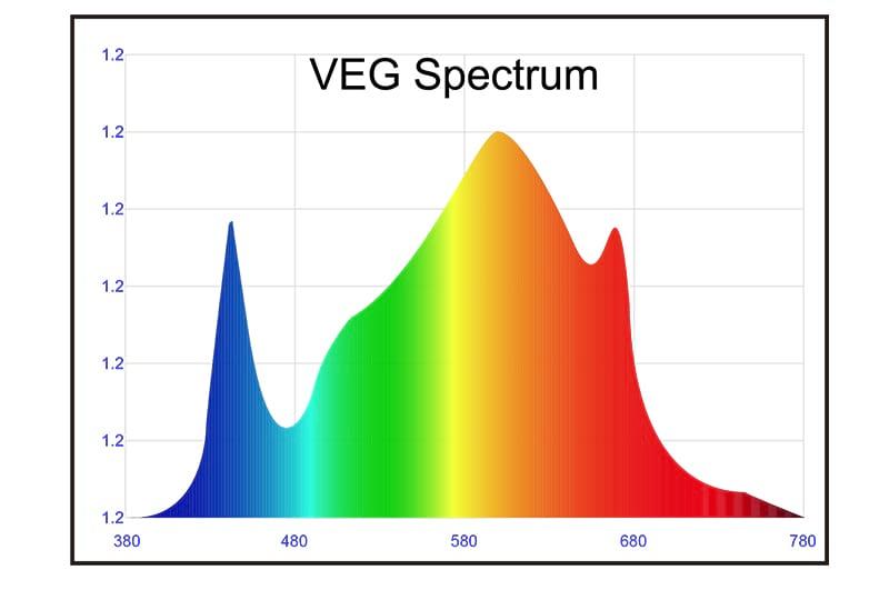 VEG Full Spectrum