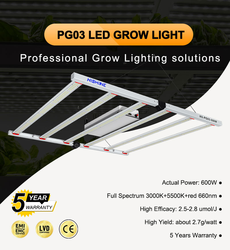 PG03 LED Grow Light 600W