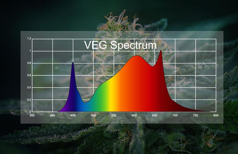 PG03 800W LED Grow Light full spectrum