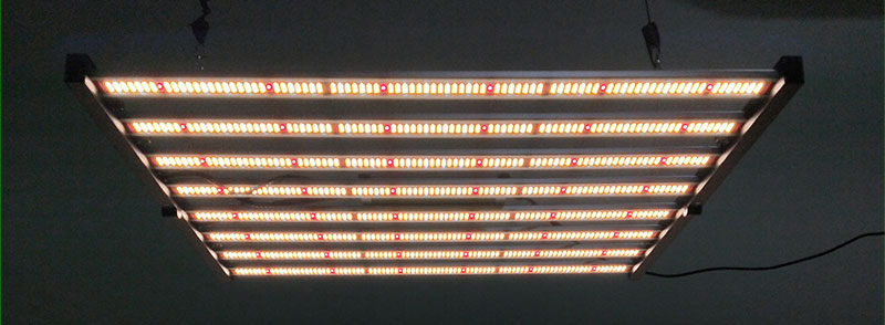 PG03 600W LED Grow Light application