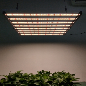 PG03 600W LED Grow Light