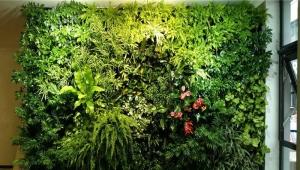 Best Plant Growth Light